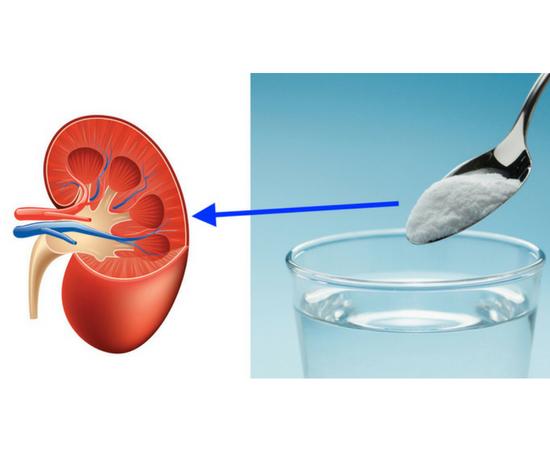 Healing Kidneys